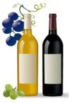 grape-and-wine-vector-material-16040-2